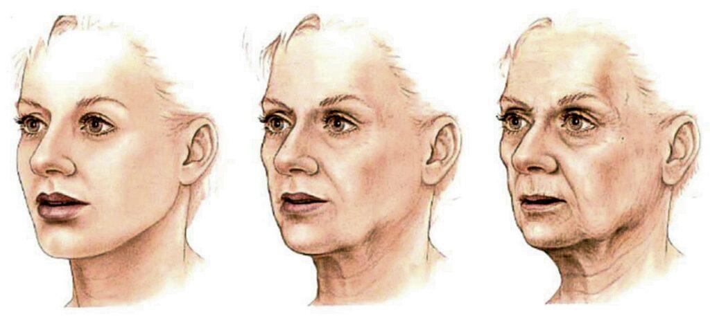 Anti-Aging: что такое 3 D?