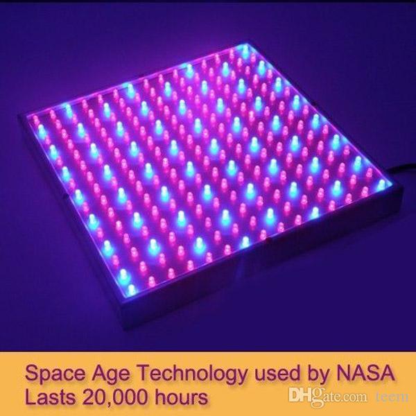 LED терапія в поєднанні з киснем загоює рани. Дослідження НАСА