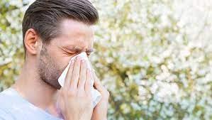 Сенная лихорадка профилактика и лечение фото