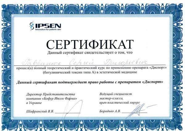 Гаврилюк диплом 17
