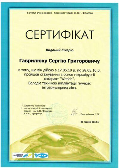 Гаврилюк диплом 21
